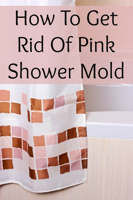 Clean Mold In Shower Without Bleach