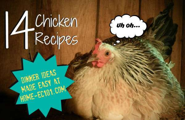 Chicken Recipes 1