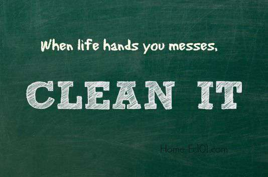 Click for all the cleaning articles on Home Ec 101