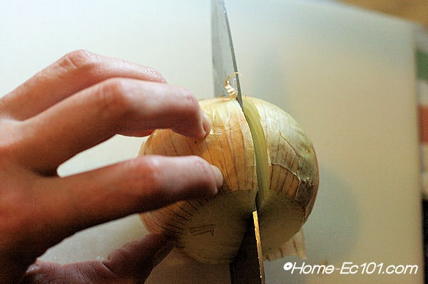 Slice the onion in half