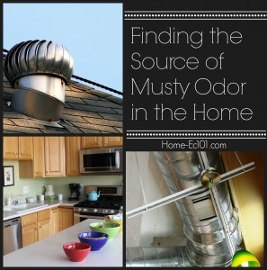 Finding the Source of Musty Odor in the Home