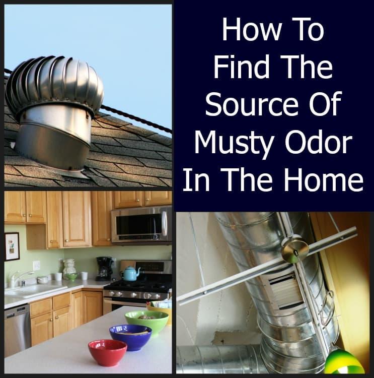 Musty Odor In A Home Home Ec 101