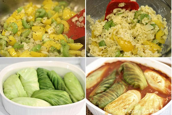 Vegetable Stuffed Cabbage Rolls