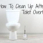 clean bathroom florr