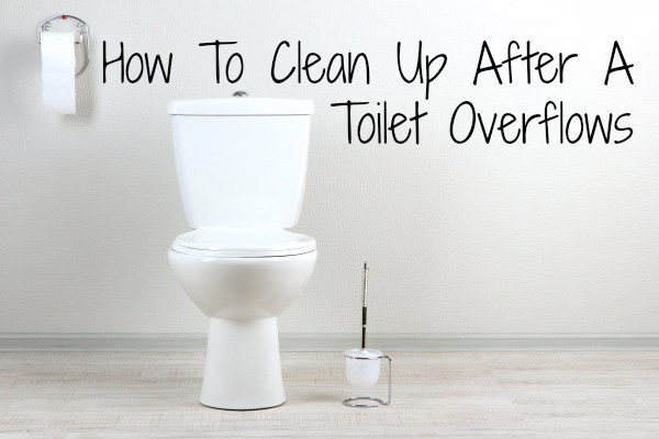 How To Clean Up After A Toilet Overflows Home Ec 101