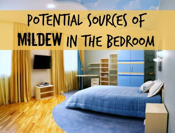 Potential Sources for Mildew Odor in a Bedroom - Home Ec 101