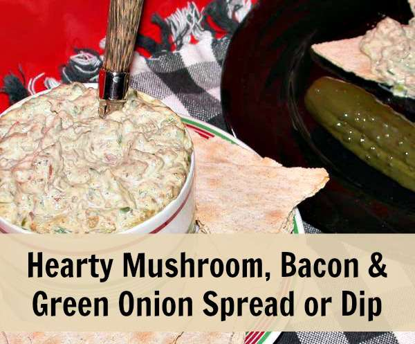 Mushroom bacon green onion dip