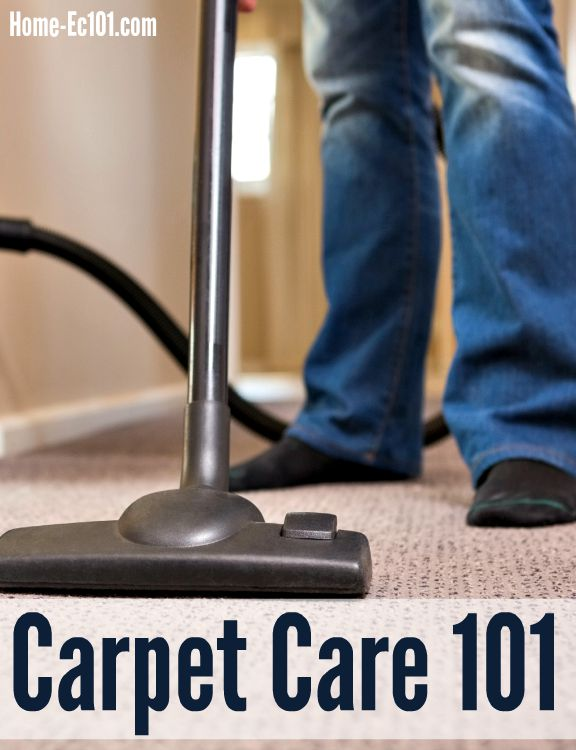 How to clean your carpet carpet care 101 home ec 101 dingy in dillon how to care for your carpet solutioingenieria Gallery