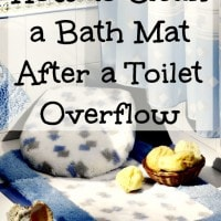 how to clean a bath mat after a toilet overflow. Black Bedroom Furniture Sets. Home Design Ideas