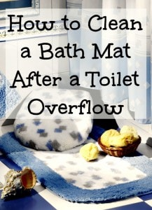 How to Clean a Bath Mat After a Toilet Overflow