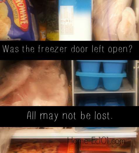 Was the freezer door left open? All may not be lost.