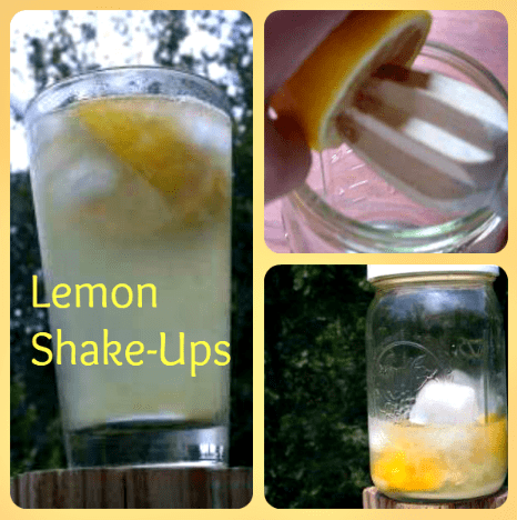 Lemon Shake Up