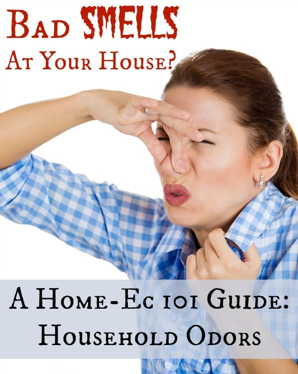 Household Odors A Home Ec 101 Guide