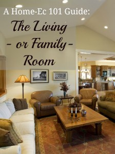 how to take care of your living room