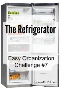 Organizational Sunday Challenge #7 Diving Into the Fridge